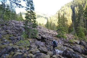 "The ""mossy boulders"" described in Olympic Mountain Climber's Guide."