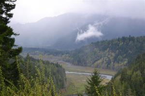 Elwha overlook. Alders are colonizing the sediments that built up in the reservoir over 100 years, behind the lower of the two Elwha dams.