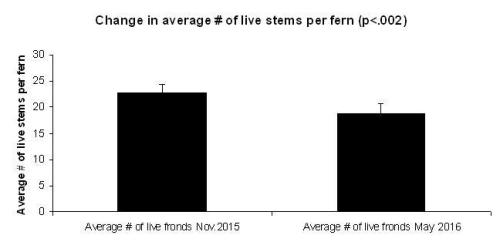 Figure 2. The average number of live stems per fern declined by 18% from November 2015 to May 2016. This is especially surprising given that our 2016 resurvey was in the spring. One would expect a brief uptick in green stems in spring, prior to the typical summer drought.